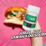 bahaya dibalik kolesterol tinggi